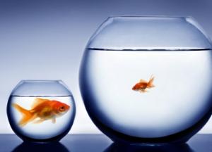 Pensare in grande, agire in piccolo e misurare | Aziende Collaborative | Flow il blog di Liquid Alessandro Santambrogio